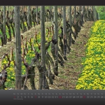 kalender2013_w_fin__seite_05